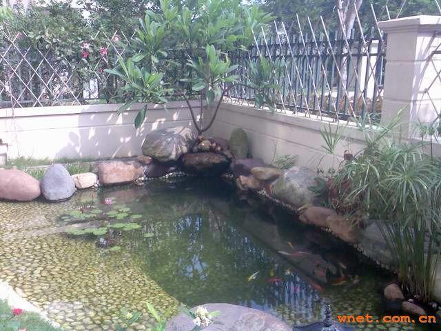 养龟池设计图 楼顶龟池建造图片图片